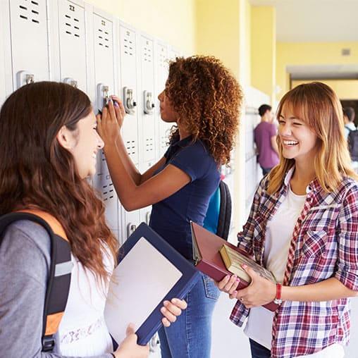 Navigating Public Schools 2